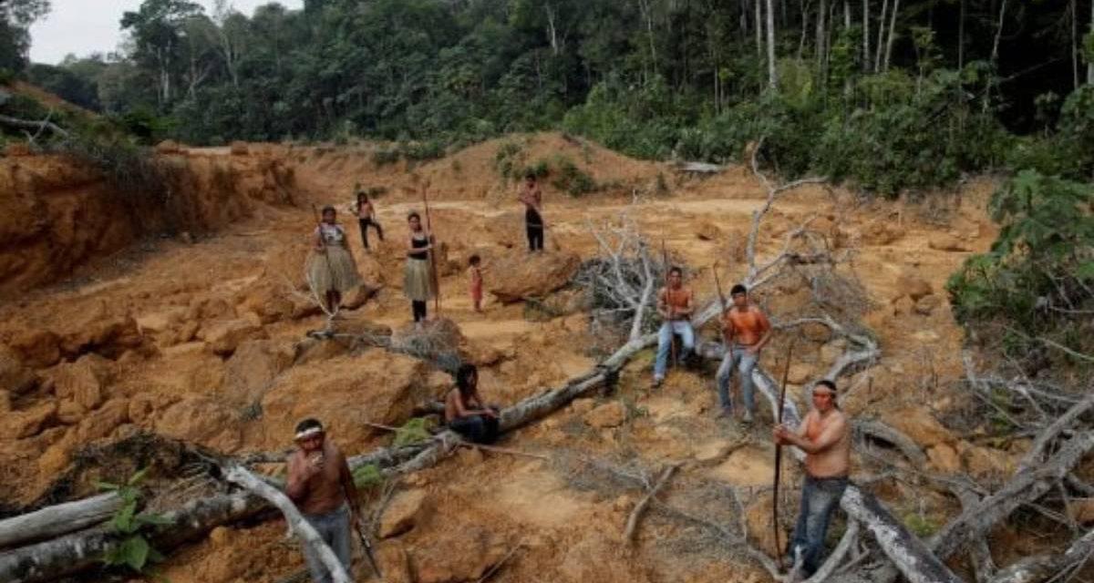 Emergenza in Amazzonia, l'appello di Ezio Greggio: il video