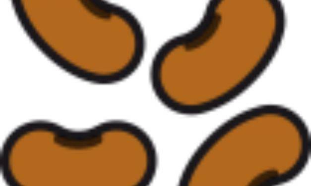 Risultati Simbolotto 20 agosto 2019: simbolo del giorno i fagioli