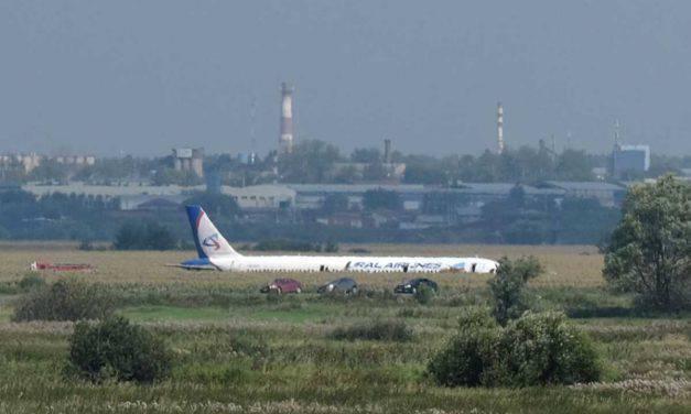 Aereo Ural Airlines, scontro con i gabbiani e atterraggio d'emergenza – VIDEO