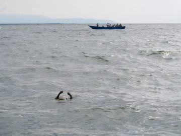 Operazioni di salvataggio sul Lago Alberta, Uganda (MICHELE SIBILONI/AFP/Getty Images)