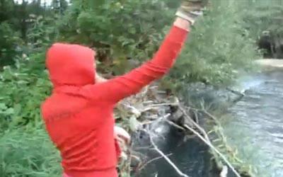 CRONACA / Cuccioli di cane, identificata la ragazza che gettava gli animali nel fiume