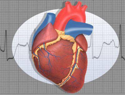 Cosa succede durante un infarto? - Wired