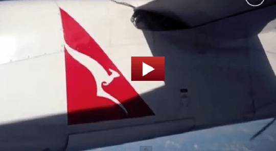 Pitone di tre metri su un aereo… Guarda il video girato da un passeggero