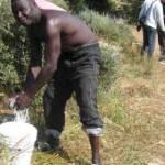 LAVORO STAGIONALE / Immigrati, emergenza per migliaia di africani tra Puglia e Basilicata