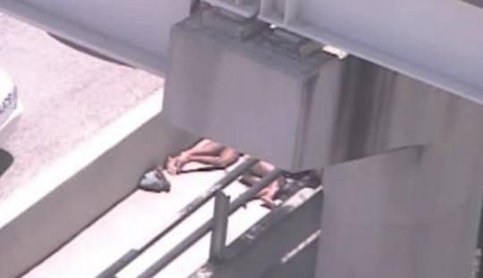 Zombie a Miami: agenti di polizia scoprono uomo mentre si nutre del volto di un barbone
