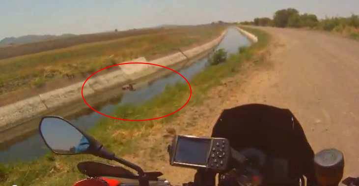 Il motociclista che ferma la corsa per fare la cosa più dolce del mondo – GUARDA VIDEO!!!!