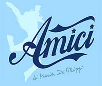 AMICI 10 / Cast, nuovi docenti nel team