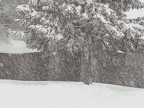 Maltempo: bufera di neve in provincia di Messina, chiuso tratto statale 185