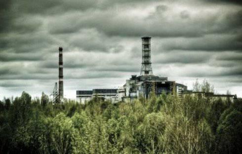 CHERNOBYL / Radiazioni, la vegetazione ha sviluppato un sistema di difesa antitossico usato già milioni di anni fa