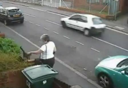 ANIMALI / Gran Bretagna, donna che ha gettato gatto nei rifiuti rischia posto di lavoro