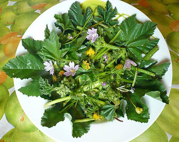 Alimentazione grandi chef esplode trend delle ricette for Fiori edibili