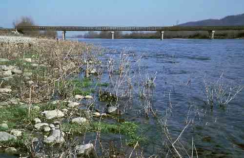 """Maltempo innalzamento fiume po – """"il livello idrometrico del fiume"""