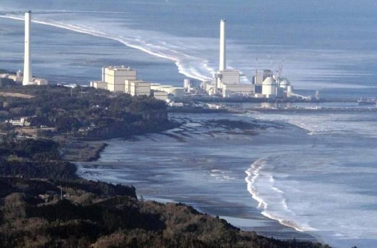 In Giappone torna l'incubo alimenti radioattivi: a Fukushima riso contaminato
