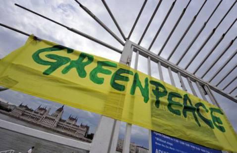 La bandiera di Greenpeace (ATTILA KISBENEDEK/AFP/Getty Images)