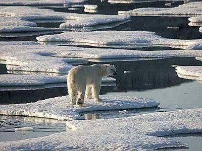 Le acque dell'Oceano Artico le più calde degli ultimi 2000 anni