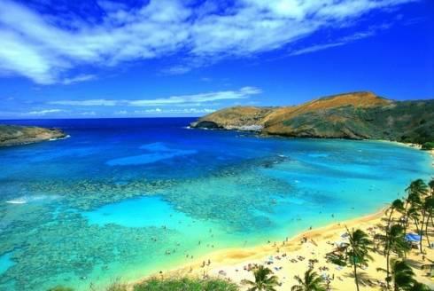 Nucleare Giappone: analisi su acqua e latte negli Stati Uniti, controllo radiazioni nelle isole Hawaii