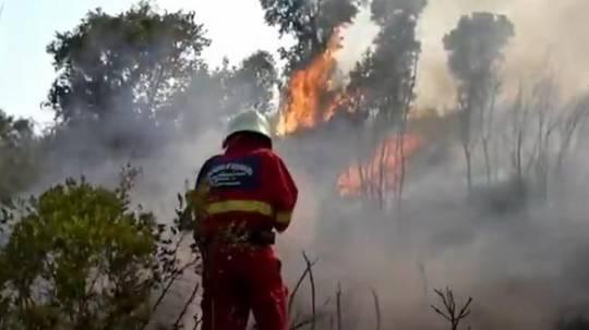 Incendi in Sardegna: forte vento alimenta le fiamme