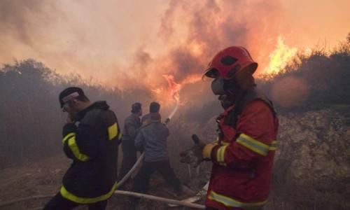 Incendio sul monte Carmelo in Israele: arriva la rivendicazione di Al Qaeda