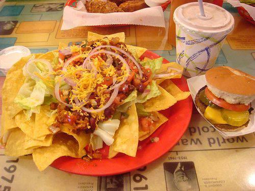 junk-food-grassi-animali