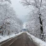 Neve e maltempo: l'Italia trema dal freddo, prevista una settimana da brividi