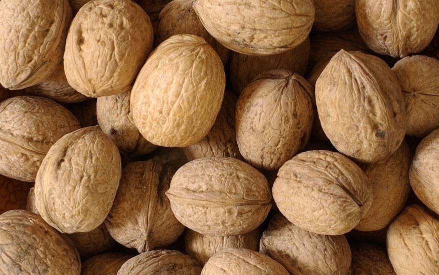 Il frutto della noce per fare il pieno di omega 3