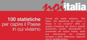 Noi Italia, Istat (screen shoti home page noi-italia.it)