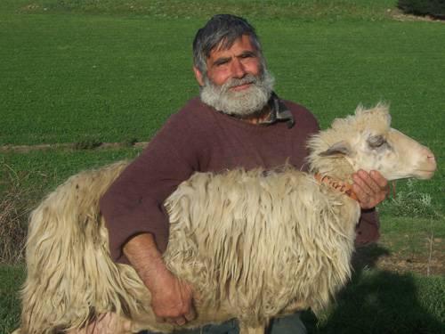 I pastori sardi marciano verso Roma: bloccati a Civitavecchia