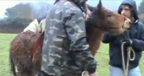 Sequestro Colleferro (screen shot youtube)