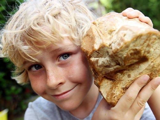 Bambino trova una strana pietra sulla spiaggia… E scopre che vale almeno 50mila euro… GUARDA FOTO!!!