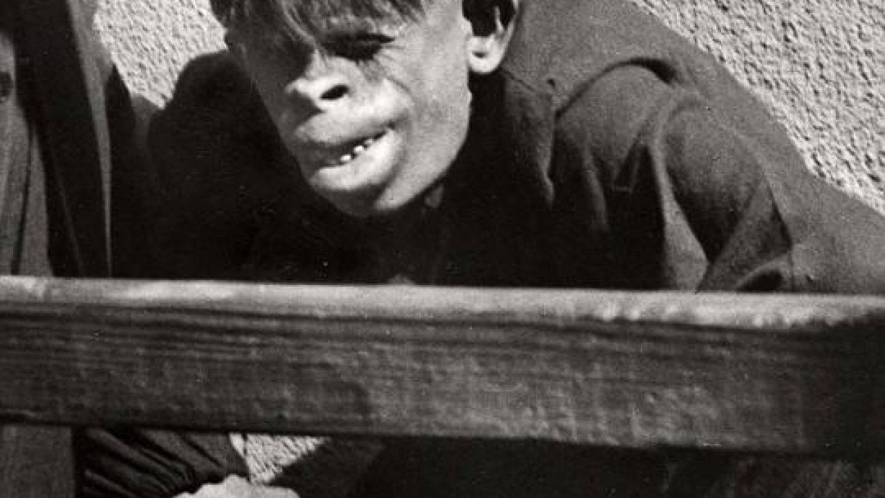 Incredibile: trovato essere metà uomo e metà scimmia... Trovato l'anello mancante? (Guarda Foto)