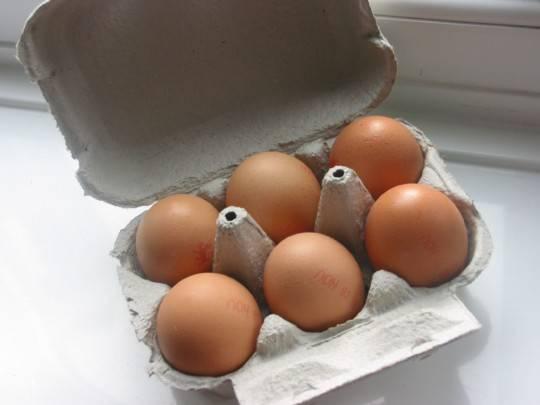 Il potere proteico dell'albume d'uovo per la costruzione di massa muscolare