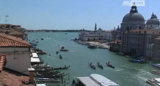 Venezia, Procura apre fascicolo su moria di pesci: ipotesi sversamento sostanze inquinanti