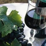 Coldiretti: il vino dà lavoro a 1,2mln di persone
