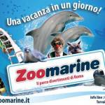 Inaugurazione Zoomarine: giornata all'insegna del divertimento e delle esibizioni live